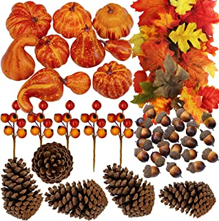Winlyn 110 Pcs Artificial Autumn Gourds, Mini Pumpkins, Pine Cones, Leaves, Acorns and Berries Fall Decorating Kit Thanksgiving Halloween Party Decor