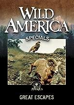 Wild America: Great Escapes