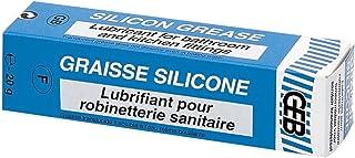 GEB 60667-515520 Grasa de silicona 20g