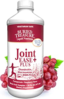 Buried Treasure Joint Ease Plus Nutritional Support Featuring Grape Seed Extract, MSM, Glucosamin, Curcumin in Liquid Vege...