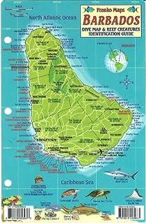 Franko Maps Barbados Reef Dive Creature Guide 4 X 6 Inch
