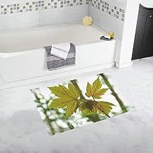 Sheet Nature Lively Veins Sun Translucent Green Custom Non-slip Bath Mat Rug Bath Doormat Floor Rug For Bathroom 20 X 32 Inch
