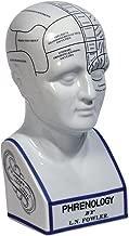 Best vintage phrenology head Reviews