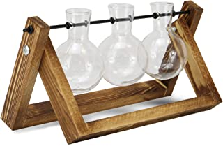 Floreros de bombilla con soporte de madera   Soporte de planta de estilo vintage   Estación de propagación de 3 vasos   Ja...