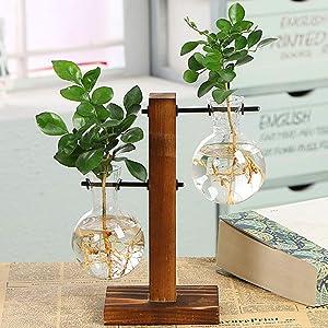 Glass Planter Bulb Vase, Desktop Plant Terrarium Kit with Retro Solid Wooden Stand for Hydroponics Plants Home Garden Office Wedding Decor (Style B)