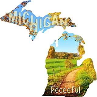 Next Innovations Metal Wall Art Michigan State Shape Peaceful Road