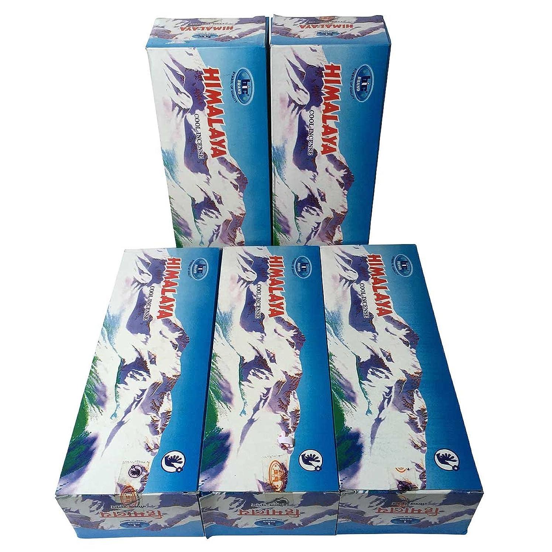 投げる気づかない抑圧ヒマラヤ香スティック 5BOX(30箱)/BIC HIMARAYA/ インド香 / 送料無料 [並行輸入品]