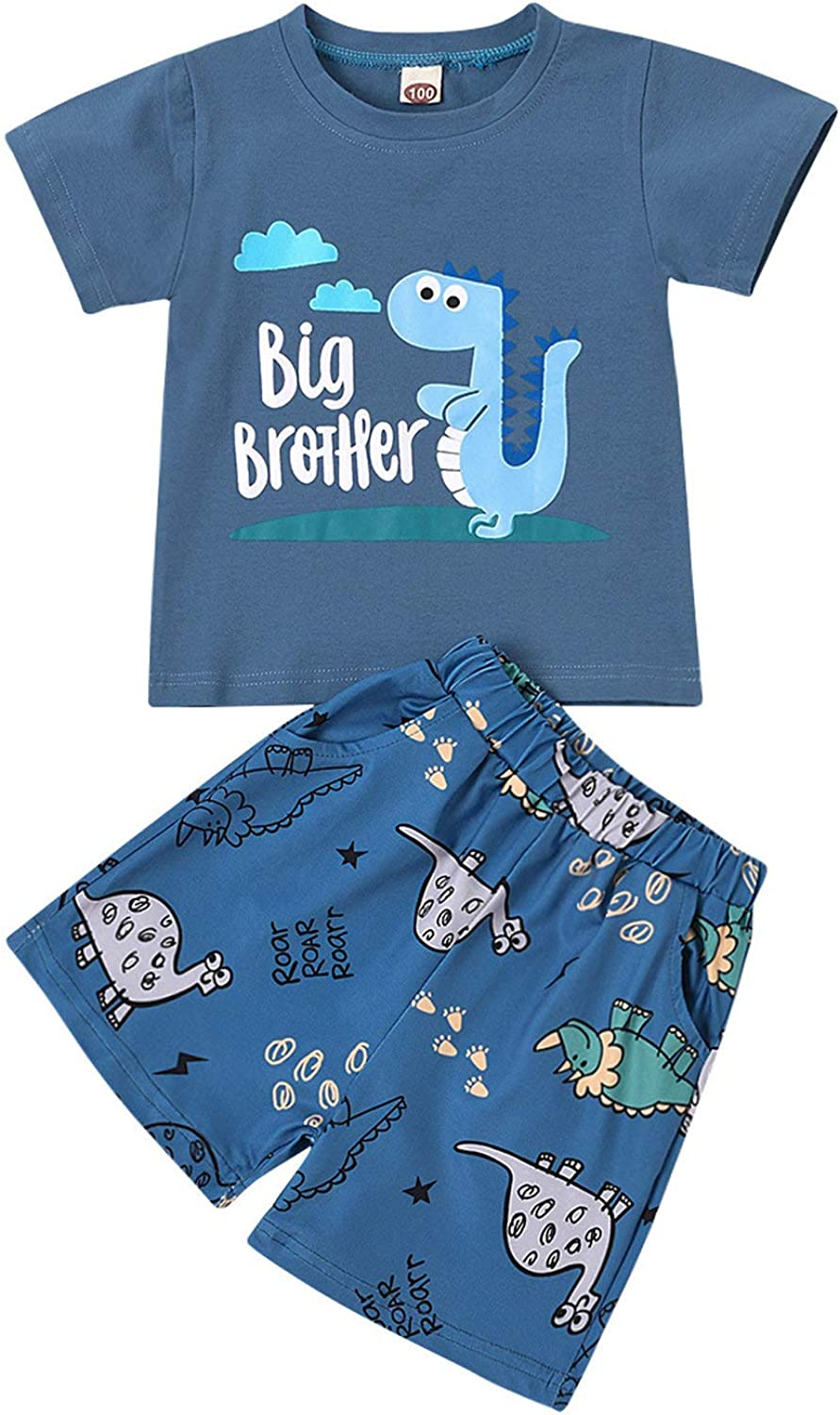 Toddler Infant Baby Boy Dinosaur T-Shirt Tops and Shorts Outfits 2 Piece Summer Clothes Set