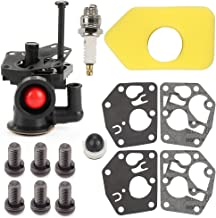 briggs and stratton 795083