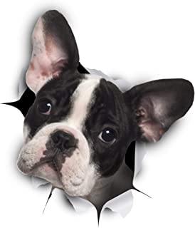 Winston & Bear 3D Dog Stickers - 2 Pack - Black and White French Bulldog Stickers for Wall, Fridge, Toilet and More - Retail Packaged Pied Frenchie Stickers