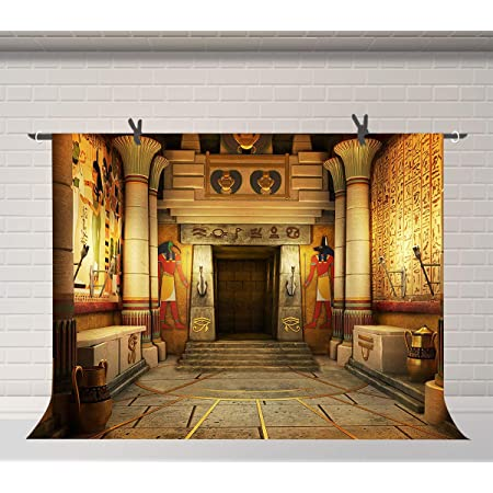 Laeacco 8x6.5ft Photography Background Egyptian Stone Pillar Art Color Wall Drawing Mural Ancient Egyptian Writing Photo Backdrop Majestic Scene TV or Video Shoot