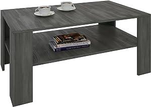 IDIMEX Table Basse Lorient, Table de Salon rectangulaire avec 1 étagère Espace de Rangement Ouvert, en mélaminé décor Bois Gris cendré
