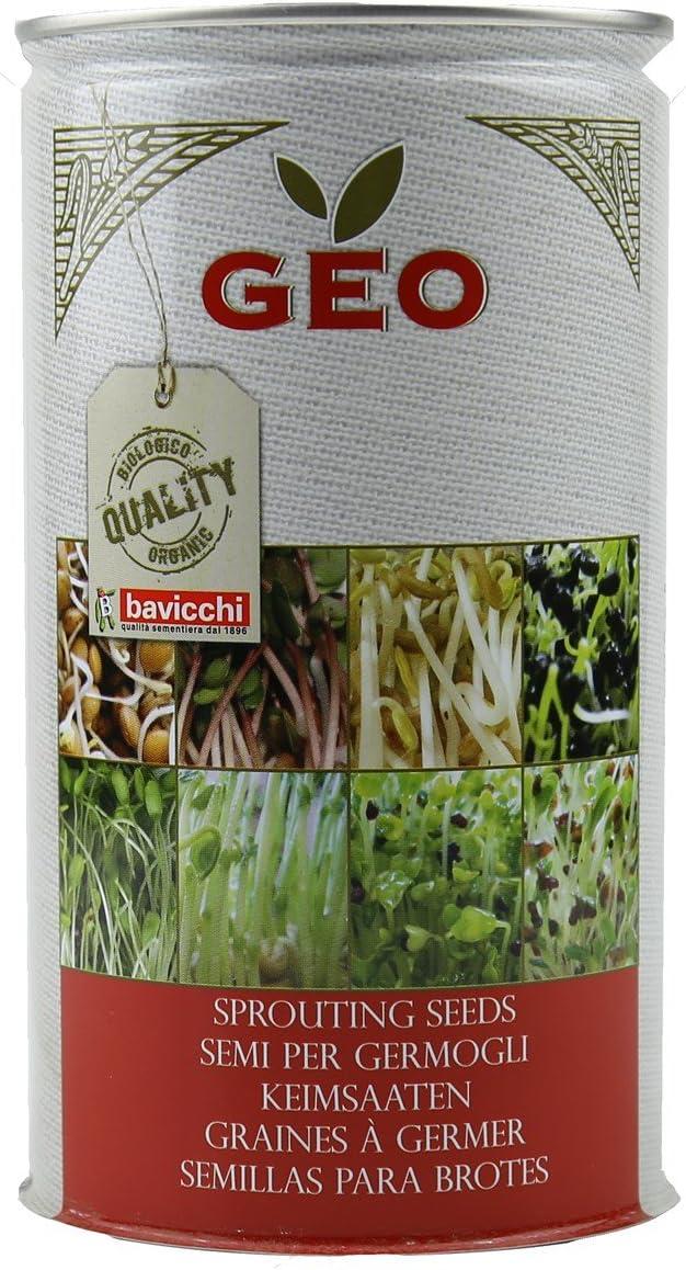 Geo Finocchio Semi da Germoglio 9.9x9.9x18 cm Marrone