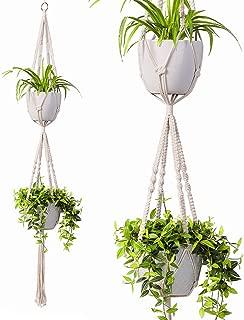 ceiling plant holder