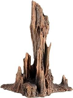 Underwater Treasures Petrified Wood - Large