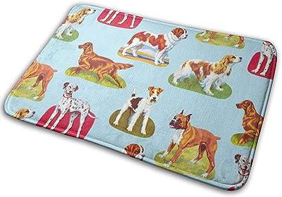 Non-Slip Doormats Dogs Entrance Rug Indoor/Outdoor Carpet Absorbs Moisture Washable Dirt Trapper Mats