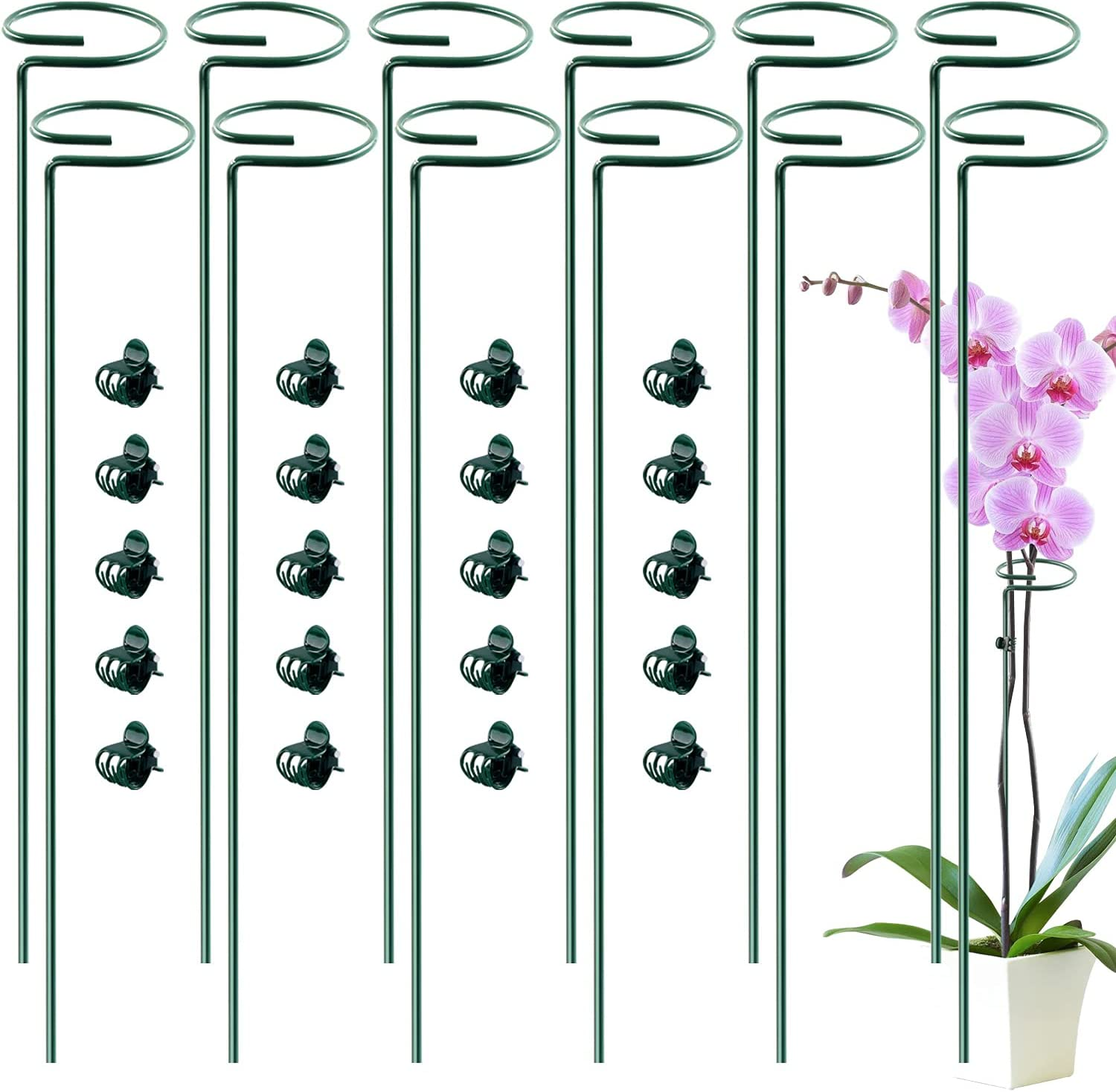 HiGift 12 Pack Plant Mail order cheap Stake Support 20pcs with for NEW before selling ☆ Flowers Orchid
