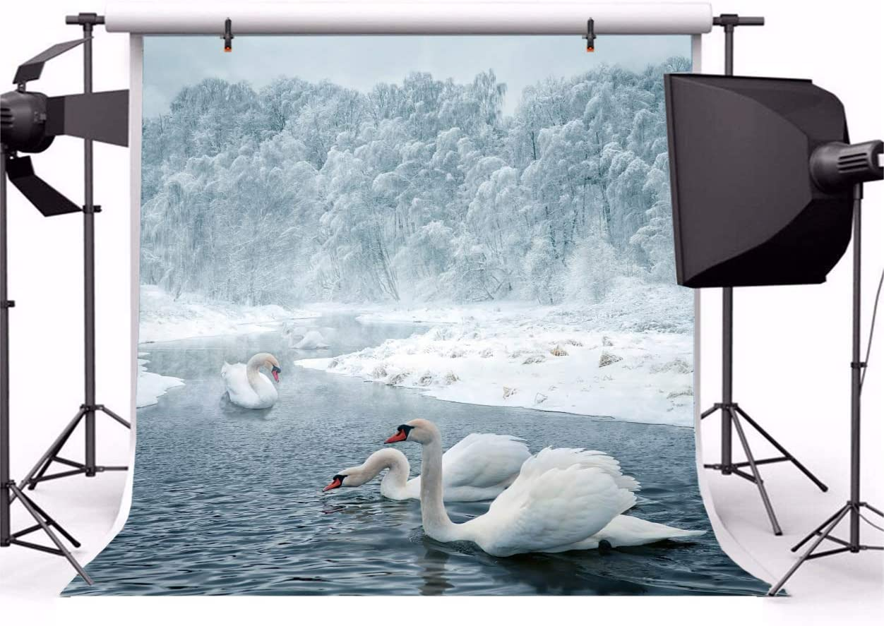 7x10 FT Vinyl Photography Background Backdrops,Cat Expression Opposite Images Fearsome Teeth Mirror Angry Intense Wildlife Background for Child Baby Shower Photo Studio Prop Photobooth Photoshoot
