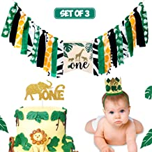 Best lion themed first birthday party Reviews