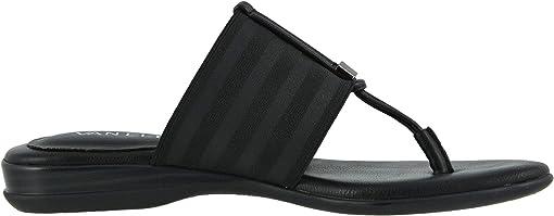 Black Ribbon Elastic