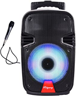 Ridgeway QS-806 Portable Audio Bluetooth - Portable - Woofer Rechargeable Speaker with Long-Lasting Battery USB/FM Radio/AUX in/Mic in/with LED Light - Black