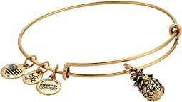 Alex and Ani - Path of Symbols-Pineapple III Bangle