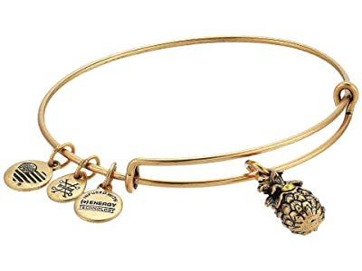 Alex and Ani Path of Symbols-Pineapple III Bangle (Rafaelian Gold) Bracelet