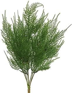 Vickerman FK170001 Everyday Asparagus Bush