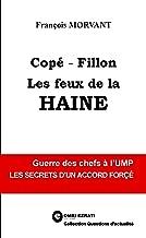 Copé-Fillon : les feux de la haine (Collection Questions d'actualité) (French Edition)