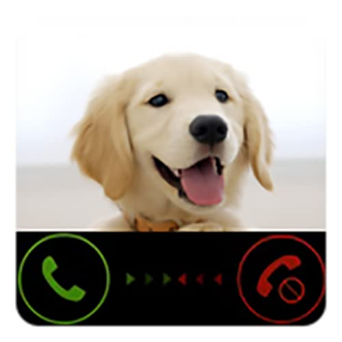 Funny Fake Call From Dog ( Gag Pet Calling Prank ) Dogs Prank Call, Scary Joke for Dog Lovers