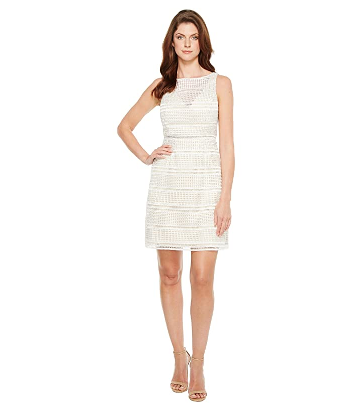 Adrianna Papell Eyelet Lace A Line Skirt Dress 6pm