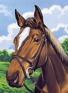 Reeves Medium Painting By Numbers - Horse's Head