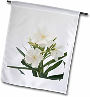 3dRose fl_46838_1 Oleander White Flower Tree Oleander Blossom Tropical Plant Buds Garden Flag, 12 by 18-Inch