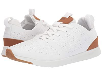 Steve Madden Royale Sneaker (White) Men