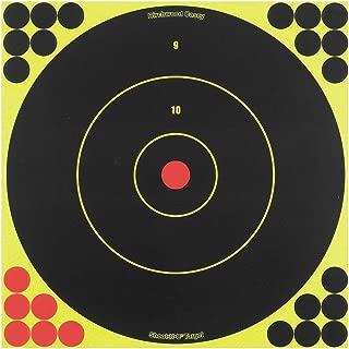 Birchwood Casey Shoot-N-C 12-Inch Bull's-Eye Target, 12 Targets