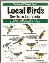 Local Birds Northern California