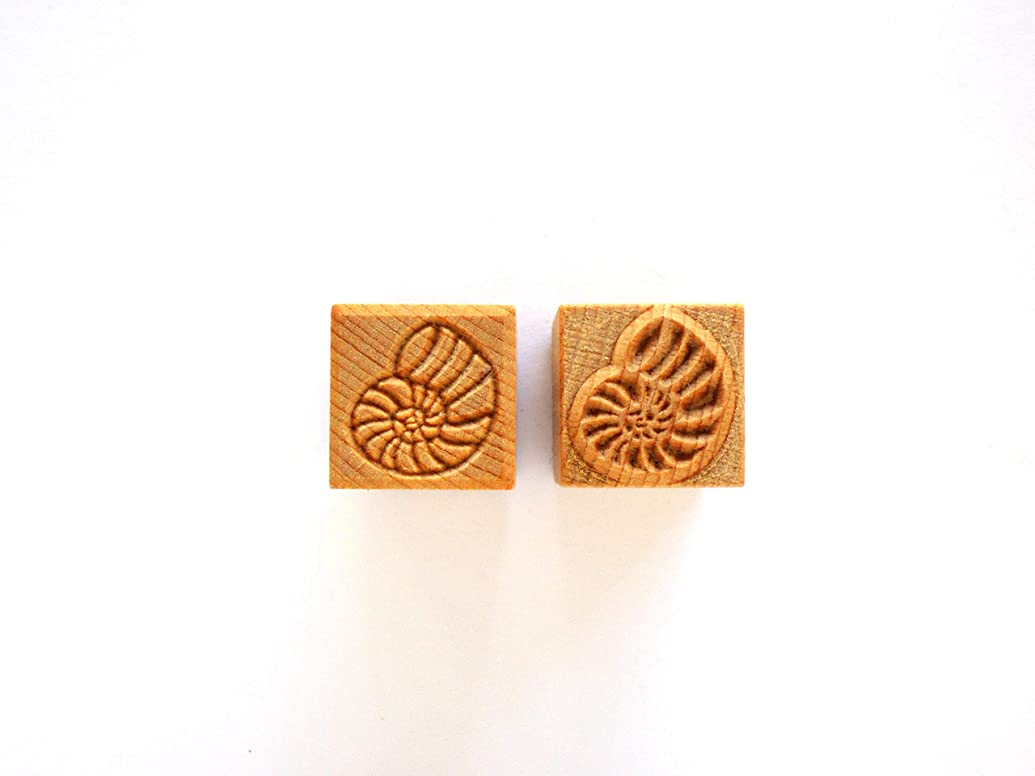 MKM Pottery Tools Stamps 4 Clay Medium Square Decorative Stamp for Clay (Ssm-121 Ammonite)