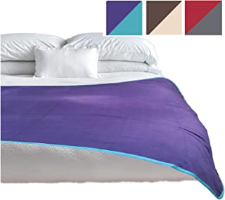 TOP Waterproof Blanket, Deluxe Bed and Furniture Protector for People and Pets, Reversible, Leak Proof Moisture Barrier, Soft Fleece, (Purple Blue Reversible, Jumbo 80x60)