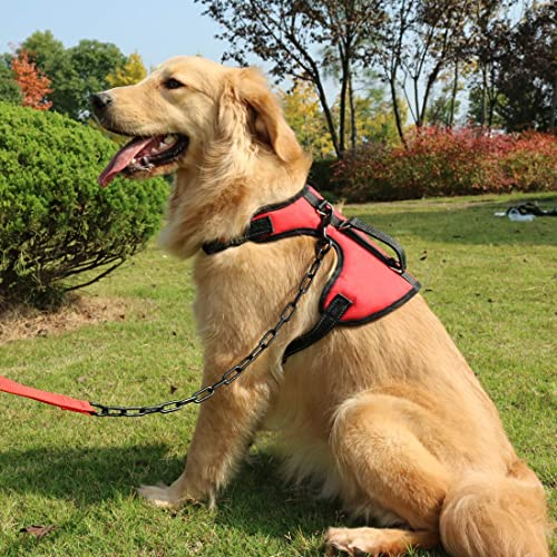 Best Harness for Lador: Amazon.com