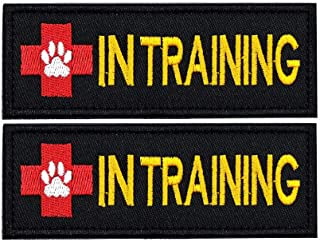 FAYOGOO Dog Service in Training US Flag Embroidered Patch for Dog Harness Vest Jacket Saddle Bag Pouch Backpack