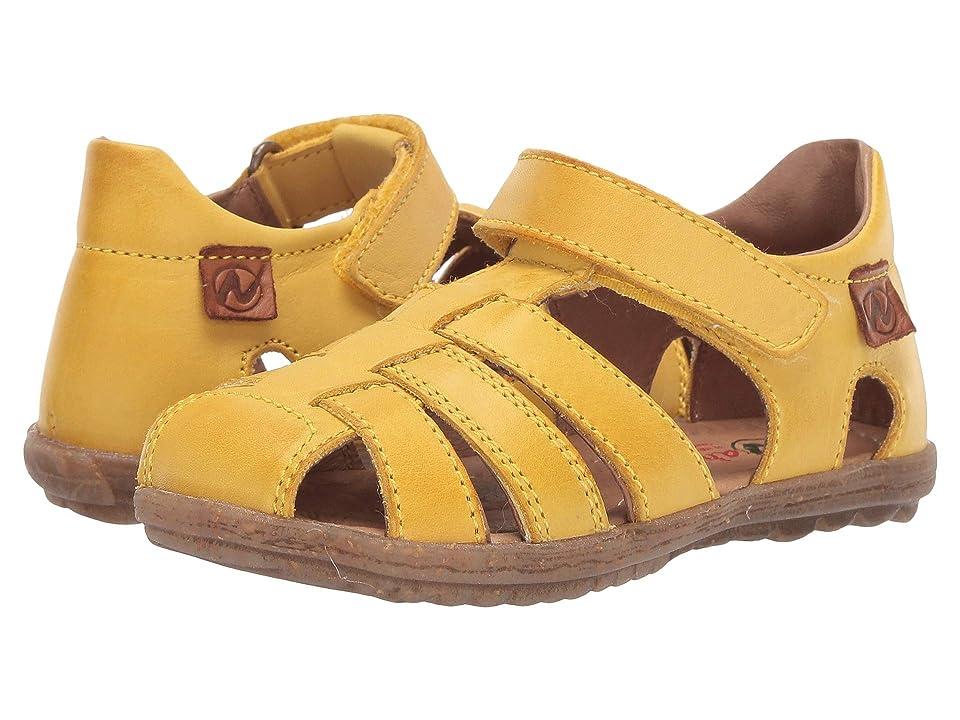 Naturino See SS19 (Toddler/Little Kid) (Yellow) Boy
