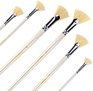 Amagic Fan Brush Set- Artist Soft Anti-Shedding Hog Bristle Paint Brushes for Acrylic Watercolor Oil Painting,Long Wood Handle with Storage Box, Set of 6