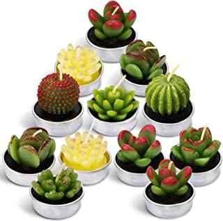LA BELLEFÉE Cactus Candles Tealight Smokeless Handmade Cute Mini Plants Gift Set Plant 12