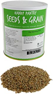 Organic Rye Grain Seeds - 5 Lb Re-Sealable Can - Rye Seed / Grains for Flour, Bread, Sprouting, Rye Grass & More