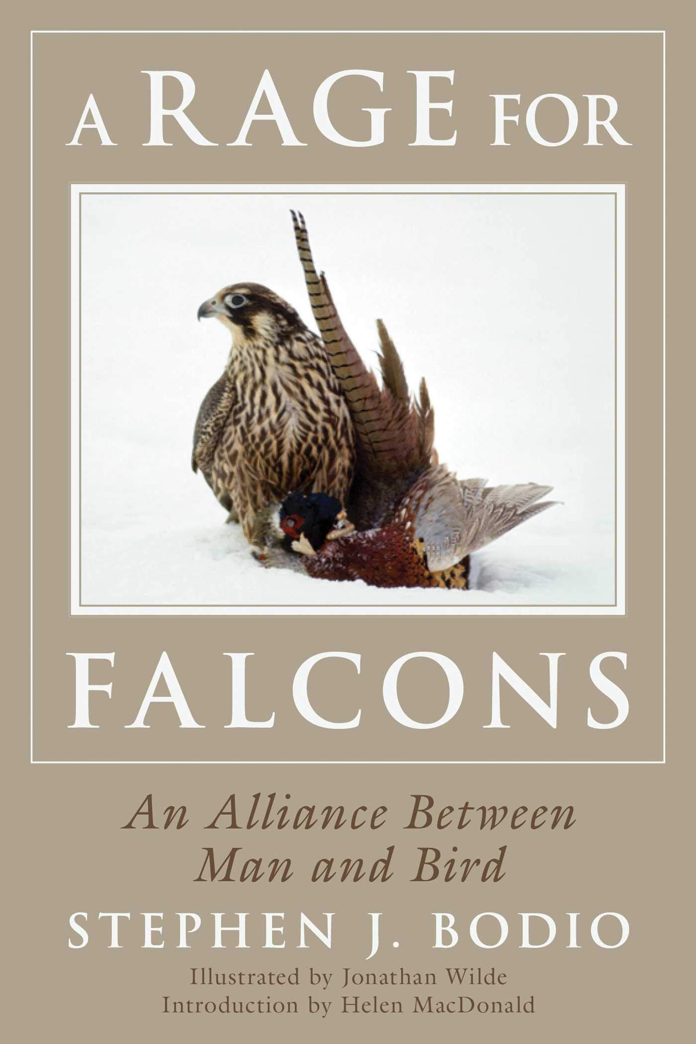 Download A Rage For Falcons: An Alliance Between Man And Bird 