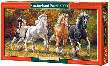 CASTORLAND Born to Run 4000 pcs Puzzle - Rompecabezas (Puzzle Rompecabezas, Fauna, Niños y Adultos, Cabello, Niño/niña, 9 año(s))