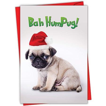 Pack of 4 pug greeting cards dog lover dog