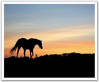 JP لندن poslt2202ustrip Lite قابلة للإزالة ملصق حائط من الفينيل ملصق جداري Lone حصان بري على نطاق عند الغسق ، 60سم x 19....