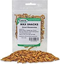 Best dried wax worms Reviews