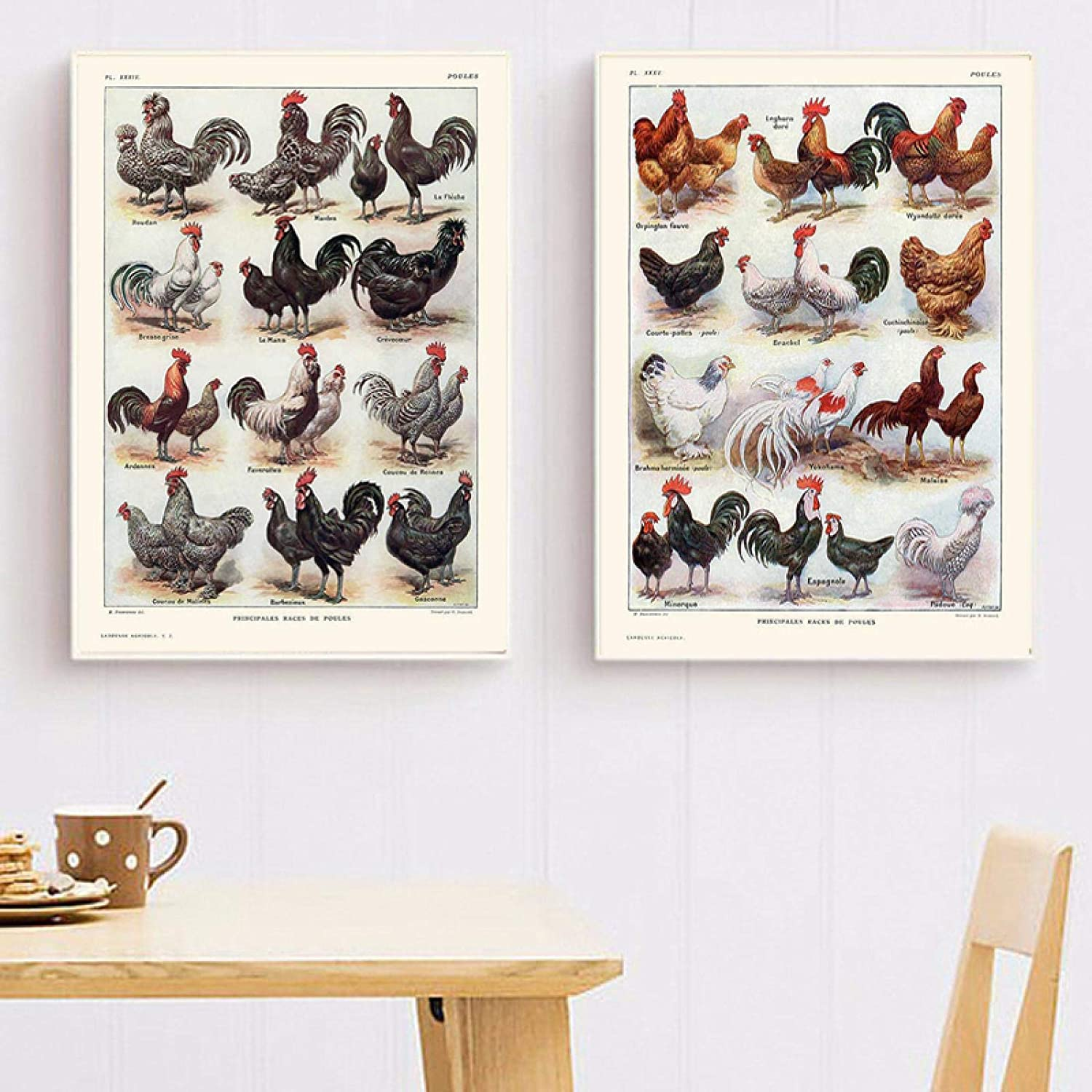 Photo On Canvas French OFFicial store Hens And Poultry Ch Breeds half Roosters Print